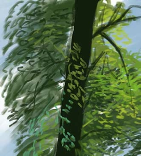 iPad art Landscape,Morning, Summer, sketch, England