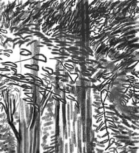 iPad art landscape, spring, sketch, black and white,
