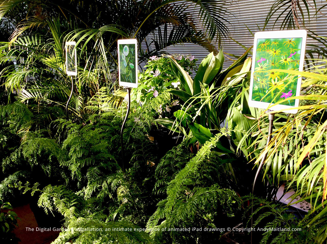 The Digital Garden, an intimate experience of animated iPad drawings. Andy Maitland, iPad Artist.