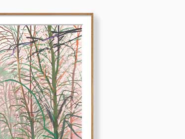 ipad-drawings-for-sale-andy-maitland-winter-trees-2-print-framed-large-01